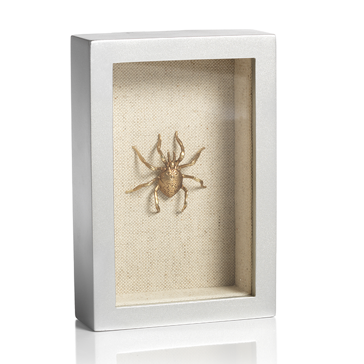 Gold Spider In Silver Shadow Box