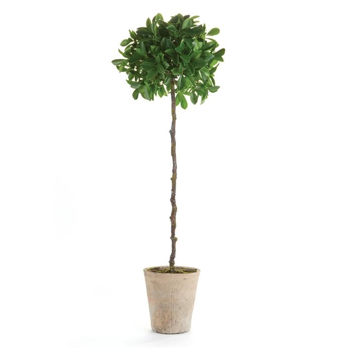 Faux Ficus Topiary Single