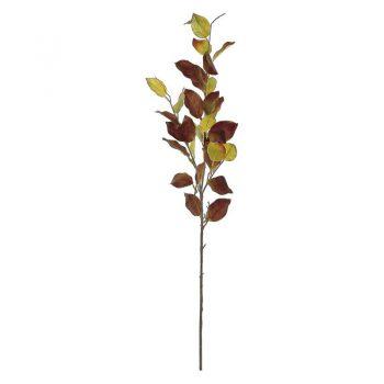 Autumn Beech Leaf Branch Spray